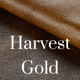 Antique Harvest Gold