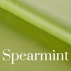 Deluxe Spearmint