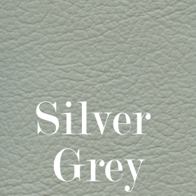 House Silver Grey