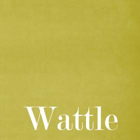Velours Wattle